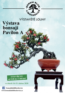 bonsai-plakat2020.png